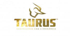 Taurus Armas (TASA4) e seu crescimento sustentável